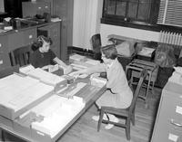 Two women working with registration cards at Mankato State College, 1957-03-22.