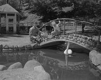 Mankato State College, father with his two children at a park observing a swan. June 15, 1959