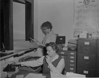 Female office workers at Mankato State College 1959-01-08