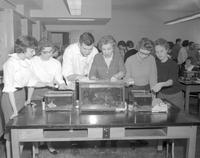 Audrey Lindsey observing aquariums with Biology class at Mankato State College, 1962-01-22.