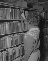 Woman at bookshelves, Lincoln Library, Mankato State College. January 25, year unknown.