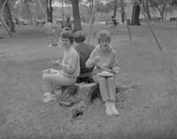 Three female Mankato State College Students seated on a stump eating at the All-College picnic for Mankato State College, 1962-05-21.