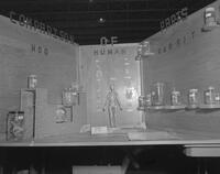 Anatomy exhibit at Mankato State College Science Fair, 1963-04-17.