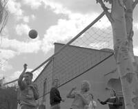Students playing Volleyball at Mankato State College, 1962-09-24.