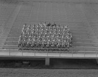 Portrait of Mankato State College football team and coaches, 1964-09-21.