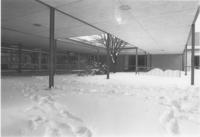 A picture of trampled snow outside of the Mankato State University Wiecking Center, 1980s.