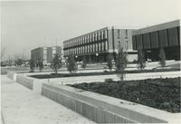 A picture of the Mankato State College Campus Mall landscaping, 1972.
