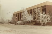 Trees covered in snow in front of the Performing Arts Center at Mankato State University.