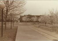 A picture of the Mankato State University Campus Mall and Wigley Administration Center, 1980s.