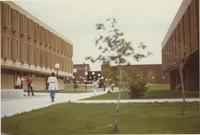 A picture of Mankato State College students walking between Armstrong Hall and Morris Hall, 1970s.
