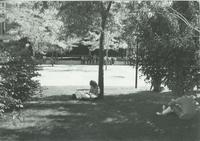 A picture of Mankato State University students sitting near the Campus Mall and Armstrong Hall academic building, 1980s.