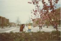 A picture of Mankato State College students walking and relaxing on the Campus Mall, 1970s.