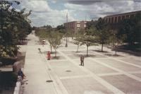 A picture of some people walking and relaxing on the Mankato State College Campus Mall near Armstrong Hall and Nelson Hall, 1970s.
