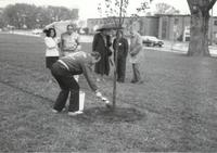 Staff and faculty tree painting at Mankato State University, 1990-05-07.