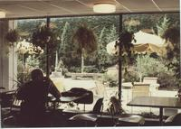 A picture of a Mankato State University student sitting near a window in the Centennial Student Union, 1985-1990.