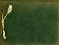 1911 MSN Annual