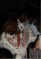 Graduating student, with dog, name unknown, at the School of Nursing Pinning Ceremony at the Holiday Inn, Mankato, 1990-92.
