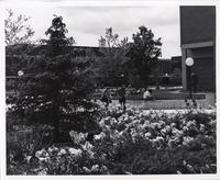 Campus Mall, Mankato State University, 1980s.