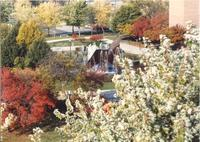 Person walking by The Fountain, Campus Mall, Memorial Library in background, Fall, Mid-Late 1980's, Mankato State University