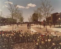 View of the Campus Mall during the summer, Mankato State University